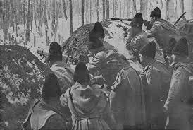 Image result for 1916 romania intra in razboi photos