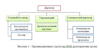 Отчет по преддипломной практике по экономике в автомагазине ООО  Организационная структура