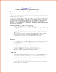 Sample Sales Plan 2424 24 24 240 DAY SALES PLAN TEMPLATE FREE SAMPLE Cvsampletemplate 22