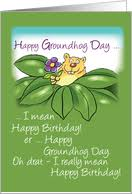 Birthday On Day Card Rabbit Greeting Cards From Greeting Card Universe