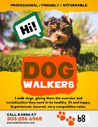 Lost Pet Flyer Maker 100 best Lost Pet and Pet Adoption Flyers images on Pinterest Lost 27