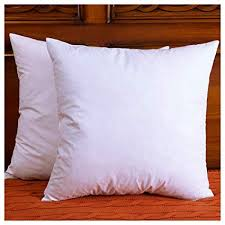 22 Inch Feather Pillow Inserts