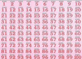 Numbered Raffle Ticket Template Free Numbered Raffle Ticket Template Numbered Raffle Tickets Template 2