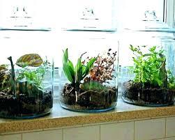 indoor vertical garden diy indoor vertical garden herb ideas wall diy indoor vertical succulent garden indoor vertical garden