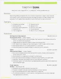 017 Experienced It Project Manager Resume Sample