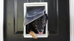 how doggy doors are making your home