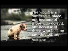 Abuse Quotes Stunning Stop The Animal Abuse QuotesCringe YouTube