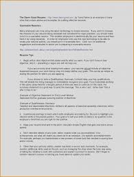 Employment Resume Examples Best Entry Level Job Resume Template