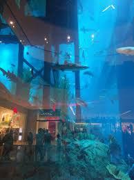 underwater hotel room at night. Underwater-hotel-dubai-price-per-night-luxurious-pinterest- Underwater Hotel Room At Night