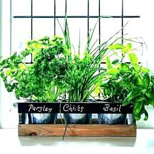 window herb planter indoor window box herb garden sill r full image for kitchen indoor window window herb planter window sill planter indoor windowsill