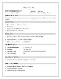 Social Media Marketing Resume Sample | Sample Resumes