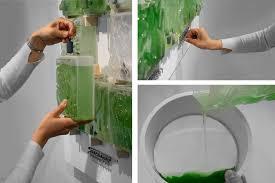 Algae Farm Design The Coral Indoor Micro Algae Farm Farming System Frames