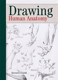 drawing human anatomy giovanni civardi 9780289800898 amazon books