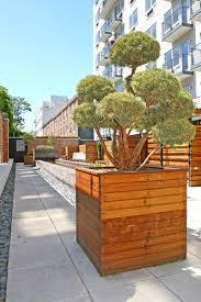 zen garden of olive park