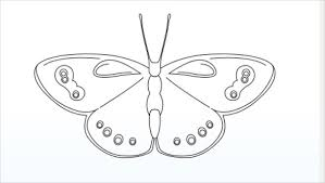 picture of a butterfly to colour. Modren Butterfly Butterfly Shapes To Color Inside Picture Of A Butterfly To Colour O