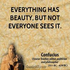 Everything Has Beauty Quotes Best Of Confucius Beauty Quotes QuoteHD