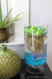tabletop water garden for indoors more