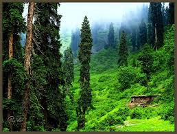 best places images beautiful places places to  beautiful place essay all sites most beautiful places of