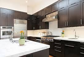 Small Picture Black Kitchen Cabinets Design Ideas pueblosinfronterasus