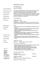 It Executive Resume Example Sample Technology Technical