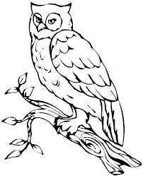Cute Owl Coloring Pages To Print Cute Owl Coloring Es For Adults To