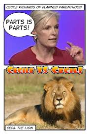 best images about abortion is murder god cecile vs cecil vote now who deserves the most attention