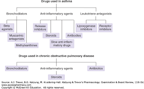 Drugs Used In Asthma Chronic Obstructive Pulmonary Disease