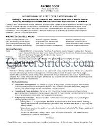 Sample Resume Of Experienced Business Analyst Fresh Resume Templates
