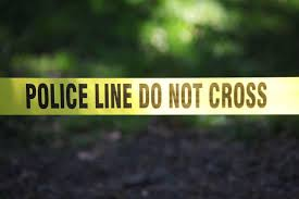 Woman Killed In Early Morning West Ashley Crash Driver Cited News