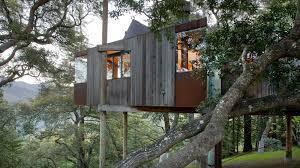 Best Tree House Resort In WayanadKeralaIndiaTreehouse Lake District