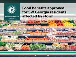 Georgia Food Stamp Eligibility Chart Sw Georgia Approved For Disaster Snap Department Of Human