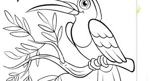 Eastern Bluebird Coloring Page Bluebird Coloring Page Coloring Pages