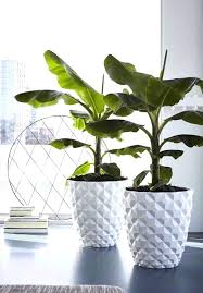 tall indoor plant pots designer indoor flower pots large white heraldry indoor planter made by at tall indoor plant