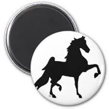 american saddlebred horse magnet