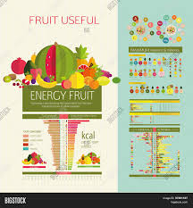 Protein Vitamins Minerals Fats And Carbohydrates Chart Illustrative Diagram Vector Photo Free Trial Bigstock