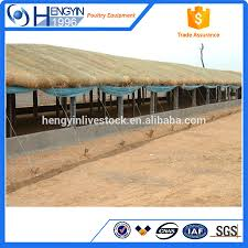 Poultry Farm Design Poultry Farm House Design A Type Layer Chicken Cage For 90 Egg Chicken Buy Poultry Farm House Design Layer Chicken Cage A Type Chicken Cage Product