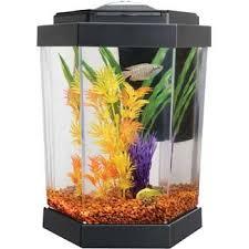 petco fish tanks. Unique Tanks Petco Hex Freshwater Aquarium To Fish Tanks