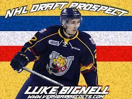 Barrie Colts 2019 Draft Prospect Luke Bignell Ohl