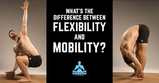 what s the difference between flexibility and mobility