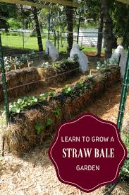 learn to grow a straw bale garden by joel karsten