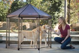 have you ever wanted to take your pet camping or on a road trip but knew you wouldn t be able to enjoy your trip and keep an eye on them the entire