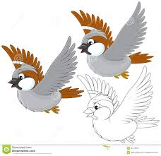 flying sparrow clipart. Delighful Flying Little Grey Sparrow Flying Color And Blackandwhite Outline Illustrations  On A White Background In Flying Sparrow Clipart