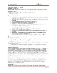 Resume Summary Examples For Sales Associate Best Of It Sales