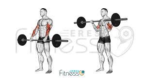 Curl de bíceps invertido con barra ¿Cómo hacerlo correctamente?
