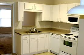 Apartment Kitchen Decorating Ideas Delectable Kitchen Amazing Small Apartment Kitchen Design Small Apartment
