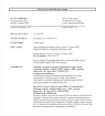 Federal Government Resume Format Enchanting Example Resume It Sample Of Federal Resume Federal Government Resume