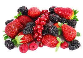 「berries」的圖片搜尋結果