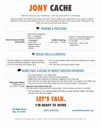 Resume In Word Format New Infographic Resume Template Venngage