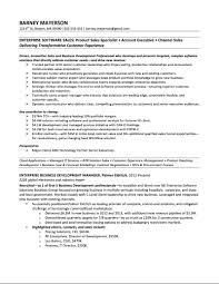 Enterprise Software Account Manager Sample Resume  Barney Mayerson
