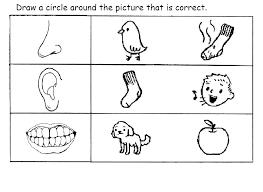 5 Senses Coloring Page 5 Senses Coloring Sheets Free 5 Senses